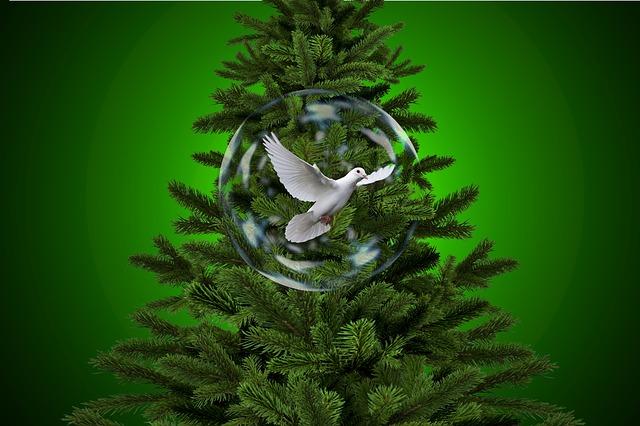 Pacea de Crăciun începe azi